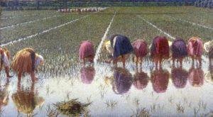 Vita in Risaia - La pittura di Angelo Morbelli @ Museo Borgogna - Vercelli | Vercelli | Piemonte | Italia