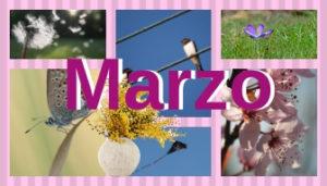 Proverbi Marzo