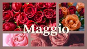 Proverbi Maggio